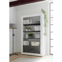 Como Two Door/Four Shelf Bookcase - White Gloss and Anthracite Finish by Andrew Piggott Contemporary Furniture
